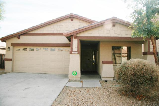 8329 W Gross Avenue, Tolleson, AZ 85353 (MLS #5723682) :: Group 46:10