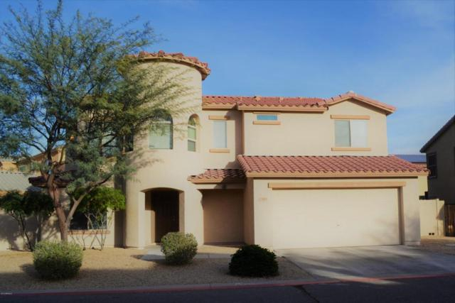 2505 S Chaparral Road, Apache Junction, AZ 85119 (MLS #5723687) :: Yost Realty Group at RE/MAX Casa Grande