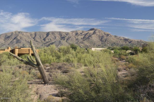 10142 E Horizon Drive, Scottsdale, AZ 85262 (MLS #5723696) :: Kortright Group - West USA Realty