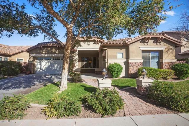 1370 E Yellowstone Place, Chandler, AZ 85249 (MLS #5723712) :: Yost Realty Group at RE/MAX Casa Grande