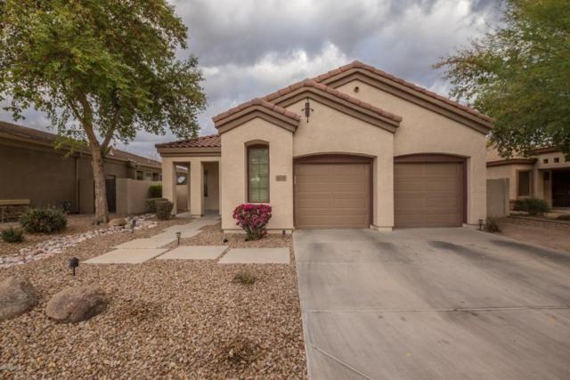 6764 S Pinehurst Drive, Gilbert, AZ 85298 (MLS #5723780) :: The Kenny Klaus Team