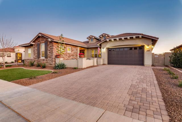 15363 W Aster Drive, Surprise, AZ 85379 (MLS #5723798) :: The Everest Team at My Home Group