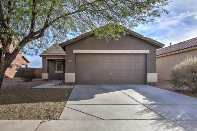 36029 W Velazquez Drive, Maricopa, AZ 85138 (MLS #5723825) :: Yost Realty Group at RE/MAX Casa Grande