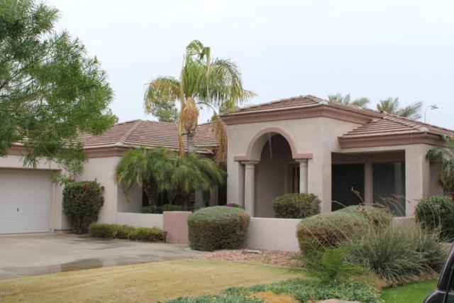 1972 W Mead Court, Chandler, AZ 85248 (MLS #5723893) :: Revelation Real Estate
