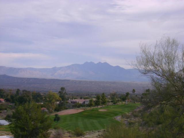 16662 E Nicklaus Drive, Fountain Hills, AZ 85268 (MLS #5723902) :: Yost Realty Group at RE/MAX Casa Grande