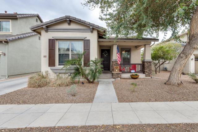 15475 W Aster Drive, Surprise, AZ 85379 (MLS #5723927) :: The Everest Team at My Home Group