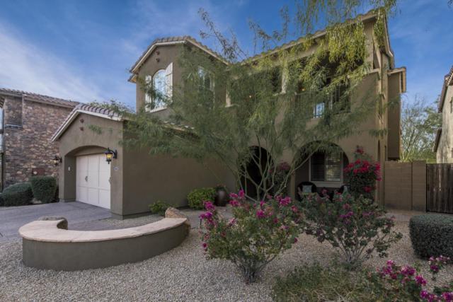22516 N 37TH Terrace, Phoenix, AZ 85050 (MLS #5723937) :: The Everest Team at My Home Group