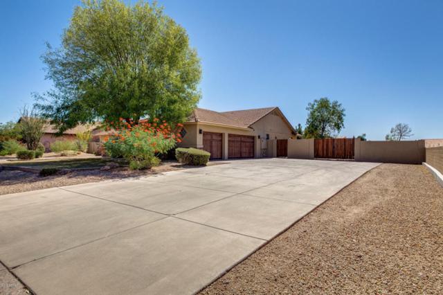 8217 W Villa Chula Lane, Peoria, AZ 85383 (MLS #5723990) :: Sibbach Team - Realty One Group