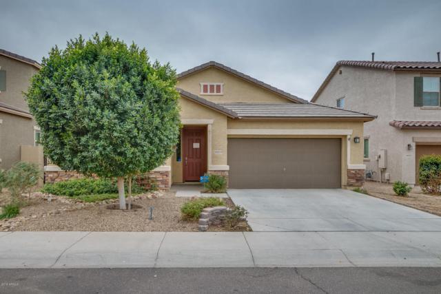 10219 W Levi Drive, Tolleson, AZ 85353 (MLS #5724040) :: Group 46:10