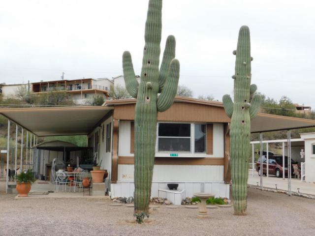119 E Lynn Way, Queen Valley, AZ 85118 (MLS #5724084) :: My Home Group