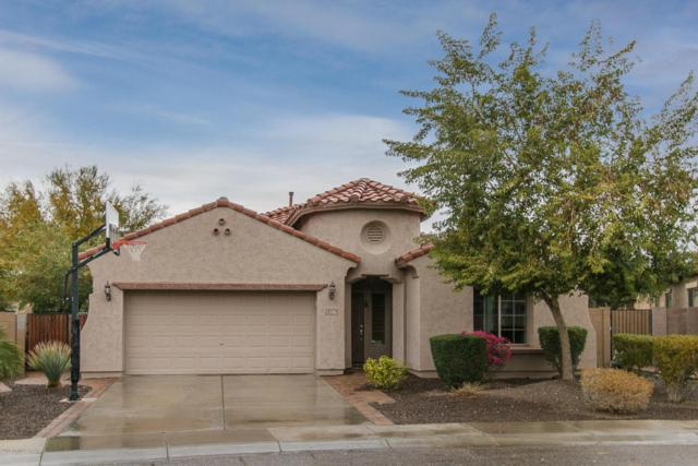 5206 W Redbird Road, Phoenix, AZ 85083 (MLS #5724165) :: My Home Group