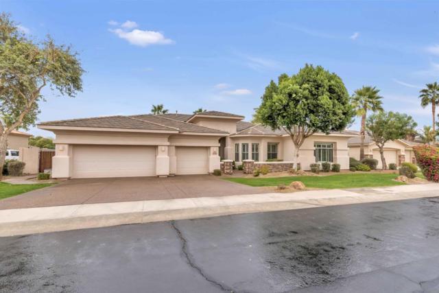 1692 W Zion Place, Chandler, AZ 85248 (MLS #5724245) :: Revelation Real Estate