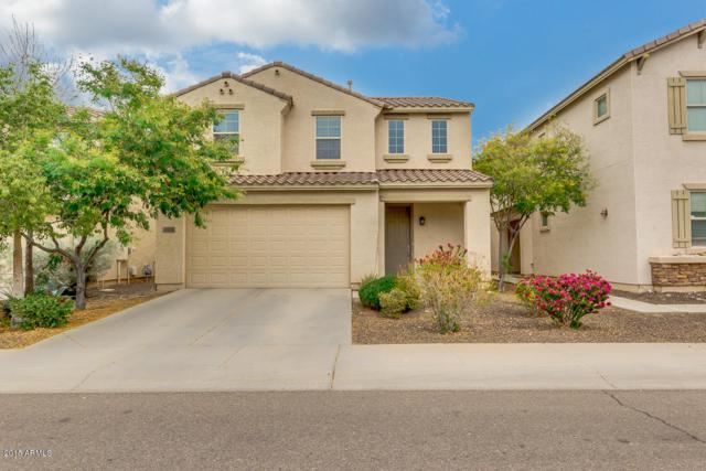 31293 N Cavalier Drive, San Tan Valley, AZ 85143 (MLS #5724277) :: Yost Realty Group at RE/MAX Casa Grande