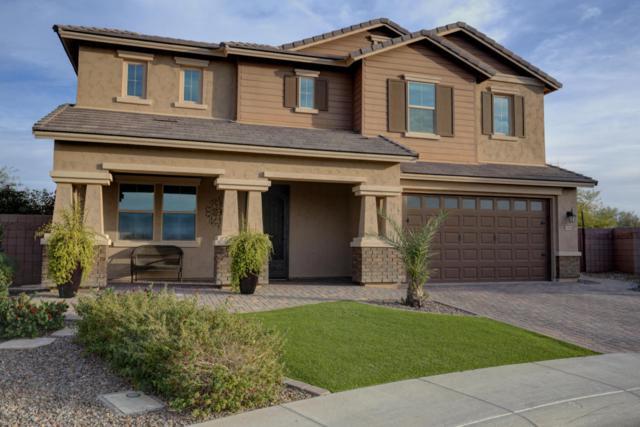 6381 S Fresno Street, Chandler, AZ 85249 (MLS #5724348) :: Occasio Realty