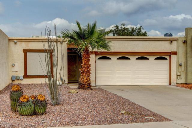 742 W Fordham Drive, Tempe, AZ 85283 (MLS #5724350) :: Yost Realty Group at RE/MAX Casa Grande