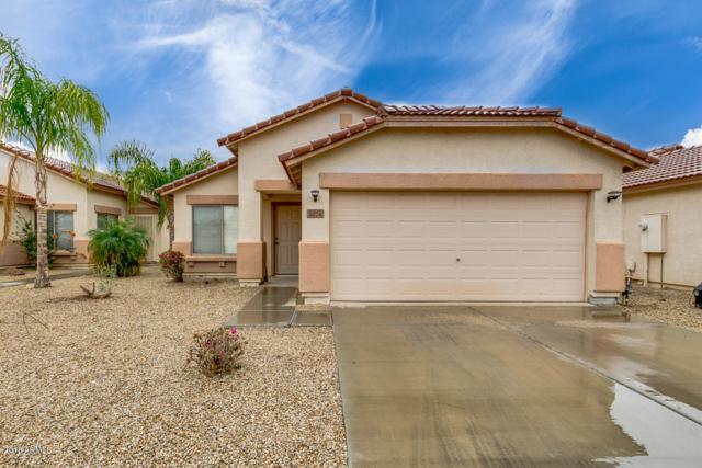 1074 E Nardini Street, San Tan Valley, AZ 85140 (MLS #5724354) :: Yost Realty Group at RE/MAX Casa Grande