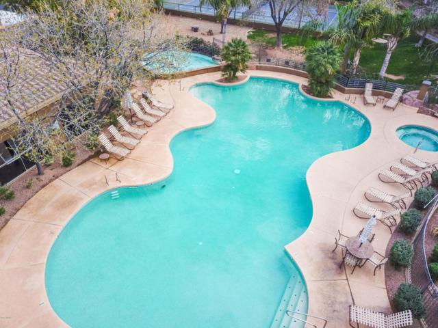 600 W Grove Parkway #2031, Tempe, AZ 85283 (MLS #5724386) :: Yost Realty Group at RE/MAX Casa Grande