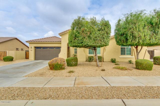 16768 W Watkins Street, Goodyear, AZ 85338 (MLS #5724399) :: Occasio Realty