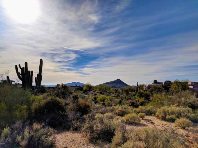 39878 N 105 Way, Scottsdale, AZ 85262 (MLS #5724443) :: Kortright Group - West USA Realty