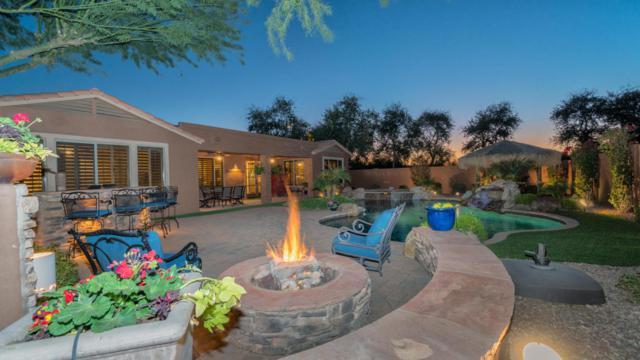 2532 E Zion Way, Chandler, AZ 85249 (MLS #5724472) :: Occasio Realty