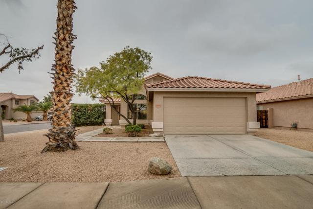 2416 S Navajo Way, Chandler, AZ 85286 (MLS #5724485) :: The Everest Team at My Home Group