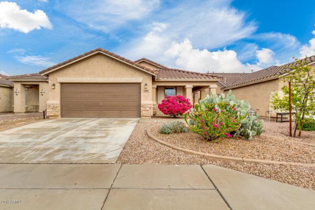 3040 W Dancer Lane, Queen Creek, AZ 85142 (MLS #5724506) :: Group 46:10