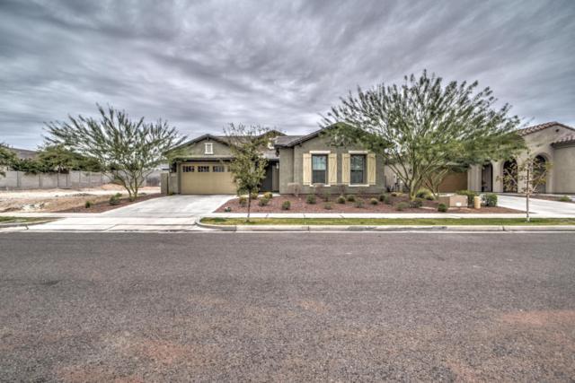 20530 W Delaney Drive, Buckeye, AZ 85396 (MLS #5724508) :: Occasio Realty