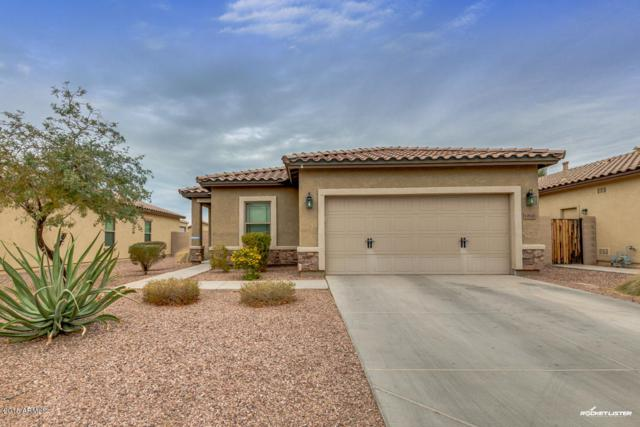 10848 W Saddlehorn Road, Peoria, AZ 85383 (MLS #5724522) :: Sibbach Team - Realty One Group