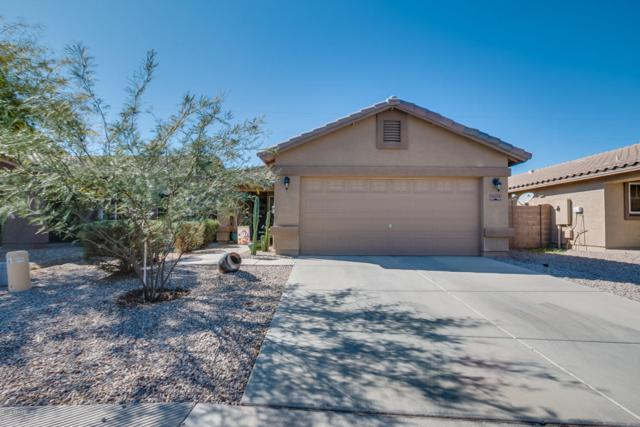 31372 N Cheyenne Drive, San Tan Valley, AZ 85143 (MLS #5724547) :: Yost Realty Group at RE/MAX Casa Grande