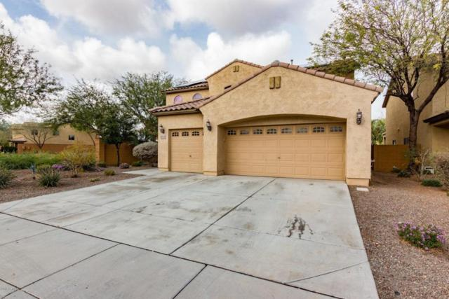26078 W Potter Drive, Buckeye, AZ 85396 (MLS #5724612) :: Kortright Group - West USA Realty