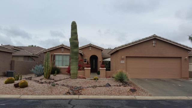 42914 W Whimsical Drive, Maricopa, AZ 85138 (MLS #5724711) :: Group 46:10