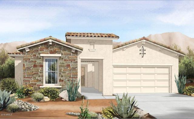 19024 W Oregon Avenue, Litchfield Park, AZ 85340 (MLS #5724745) :: Devor Real Estate Associates