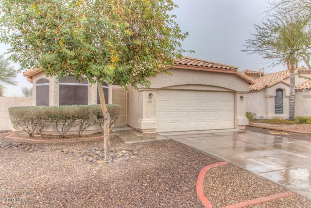 2549 N 125TH Drive, Avondale, AZ 85392 (MLS #5724775) :: Group 46:10