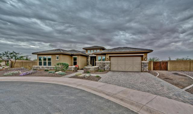 31136 N 129TH Avenue, Peoria, AZ 85383 (MLS #5724793) :: RE/MAX Excalibur
