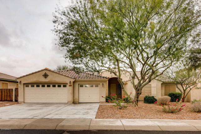 2859 N 144TH Drive, Goodyear, AZ 85395 (MLS #5724803) :: Essential Properties, Inc.