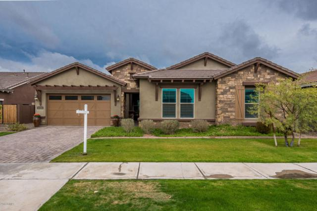 2920 E Sunrise Place, Chandler, AZ 85286 (MLS #5724807) :: The Everest Team at My Home Group