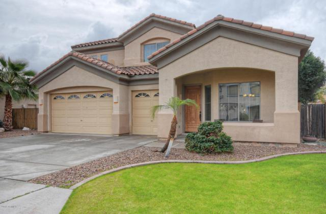 12611 W Segovia Drive, Litchfield Park, AZ 85340 (MLS #5724825) :: Devor Real Estate Associates