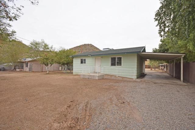 10615 N 14TH Avenue, Phoenix, AZ 85029 (MLS #5724828) :: Yost Realty Group at RE/MAX Casa Grande