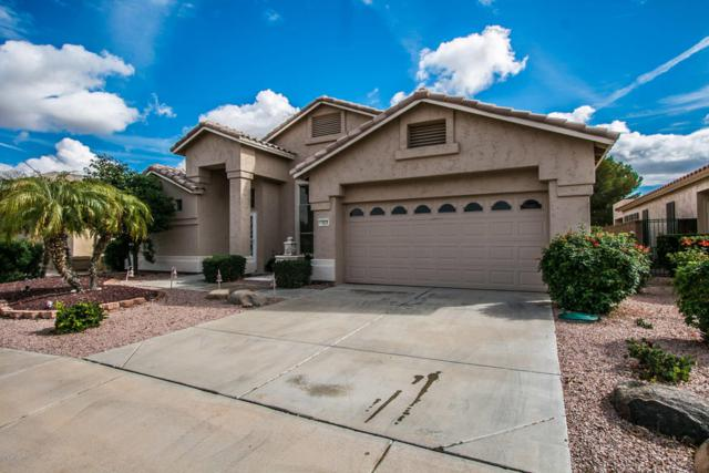 17625 N Goldwater Drive, Surprise, AZ 85374 (MLS #5724839) :: Occasio Realty