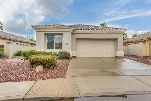 933 W Raven Drive, Chandler, AZ 85286 (MLS #5724840) :: Group 46:10