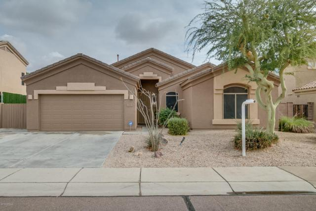 20297 N 93rd Avenue, Peoria, AZ 85382 (MLS #5724851) :: The Everest Team at My Home Group
