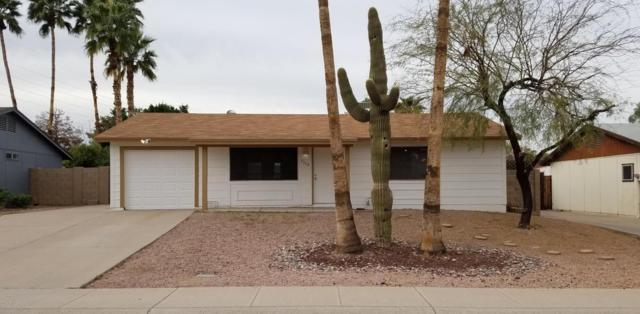 5708 S Beck Avenue, Tempe, AZ 85283 (MLS #5724868) :: Group 46:10