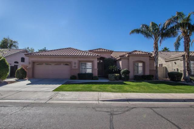 643 W Raven Drive, Chandler, AZ 85286 (MLS #5724883) :: Group 46:10