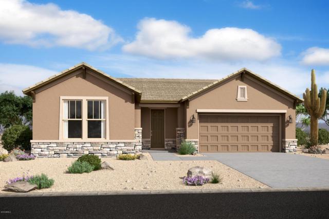 5241 W Lydia Lane, Laveen, AZ 85339 (MLS #5724890) :: Occasio Realty