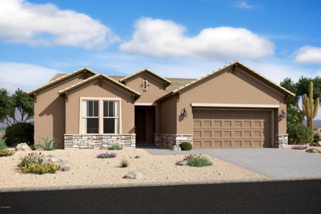 5249 W Lydia Lane, Laveen, AZ 85339 (MLS #5724897) :: Occasio Realty