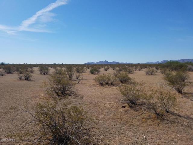 211XXX W Spur Road, Buckeye, AZ 85326 (MLS #5724898) :: Brett Tanner Home Selling Team