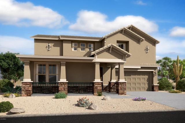 5242 W Lydia Lane, Laveen, AZ 85339 (MLS #5724901) :: Occasio Realty
