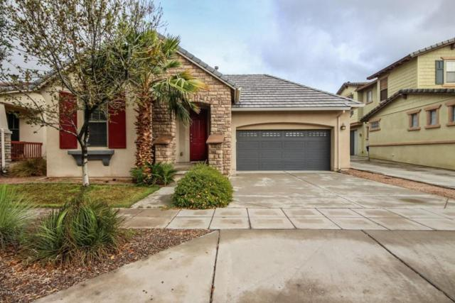 15128 W Windrose Drive, Surprise, AZ 85379 (MLS #5724912) :: Group 46:10
