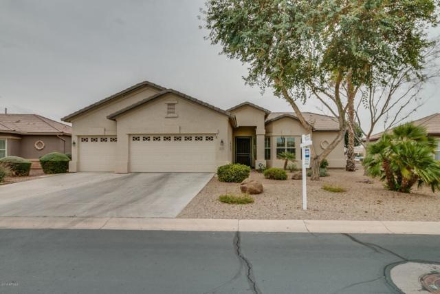 3749 E Peach Tree Drive, Chandler, AZ 85249 (MLS #5724923) :: Group 46:10