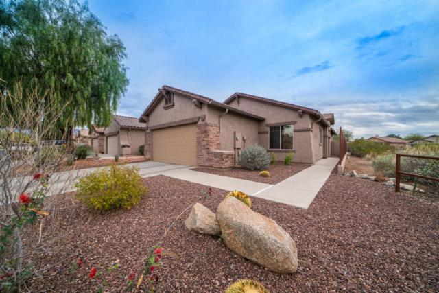 8217 S Pioneer Court, Gold Canyon, AZ 85118 (MLS #5724938) :: Revelation Real Estate